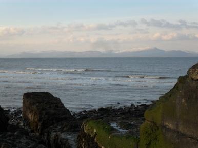 Moss Rocks Dunany, Co Louth