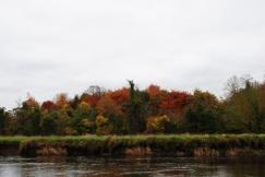 Riverbank November