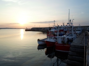 Boats, Evening, Clogherhead Co Louth