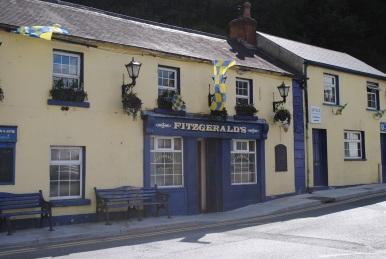 Fitz pub 2