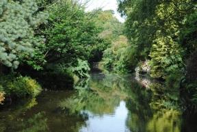A river runs through it-Mount Usher