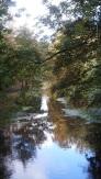 Canal Autumn 3