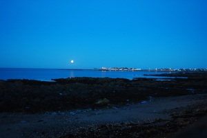 Moonlight on Skerries Bay