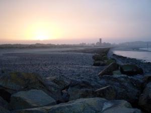Estuary Rocks