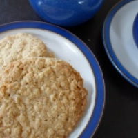 Juneathon Day Four: Oat Biscuits