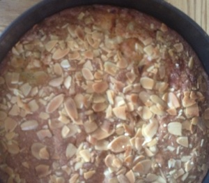 Apple and Apricot Cake