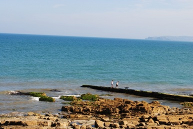Howth Head in the distance