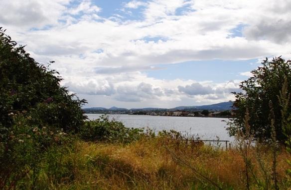 View of Sandymount from Irishtown